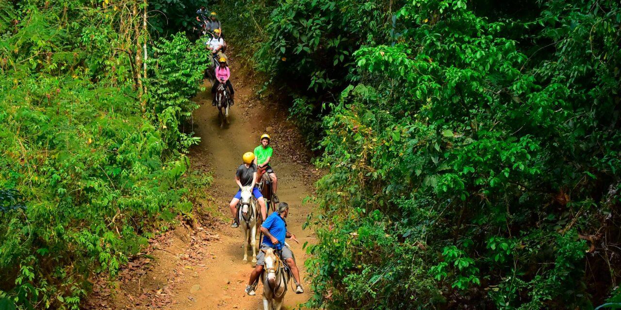 Horseback Riding & Chocolate Experience Shore Excursion from Caldera and Puntarenas
